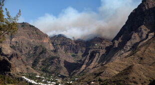 Pożar na Gran Canarii (PAP/EPA/Angel Medina G.)