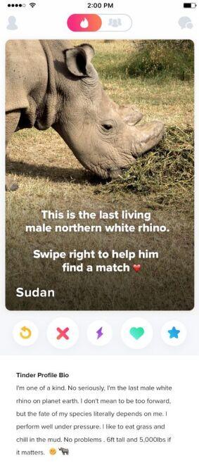 Sudan apeluje o pomoc (imgur.com)